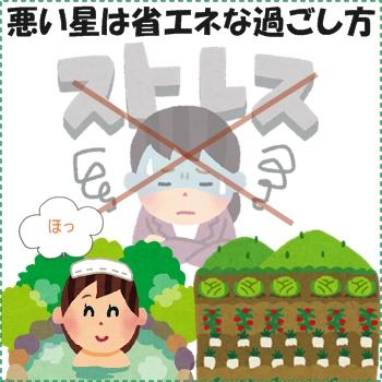 良い星こそ間違わずに進もう(^o^)/